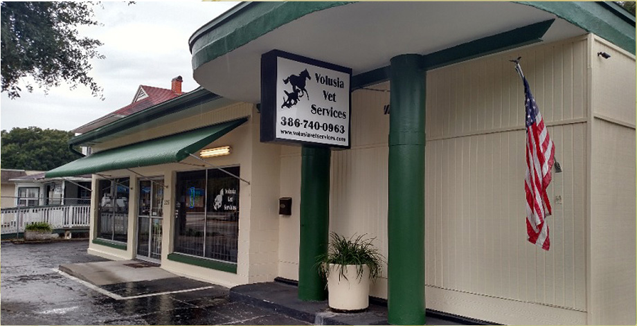 Veterinarian Office in DeLand
